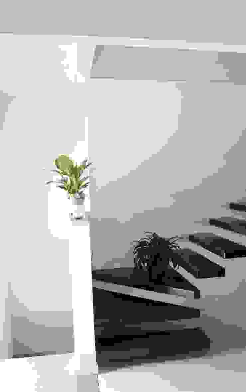 CasaAttiva Koridor & Tangga Modern