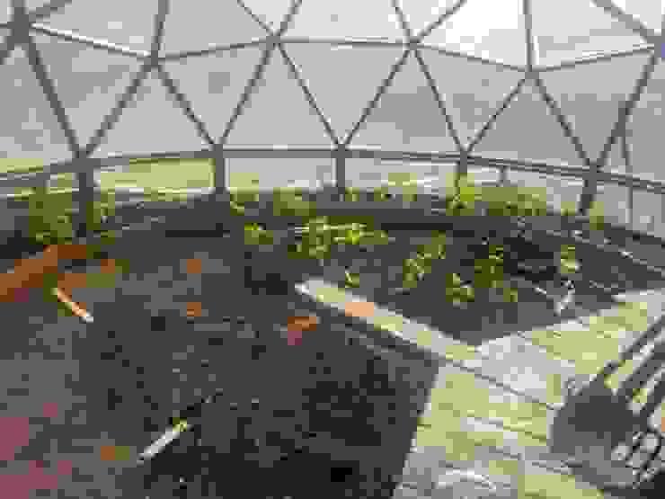 invernadero Jardines de estilo rural de smart domos Rural