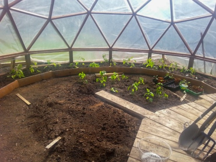 smart domos Giardino rurale