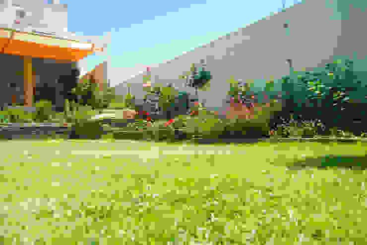 Śródziemnomorski ogród od Landscapers Śródziemnomorski