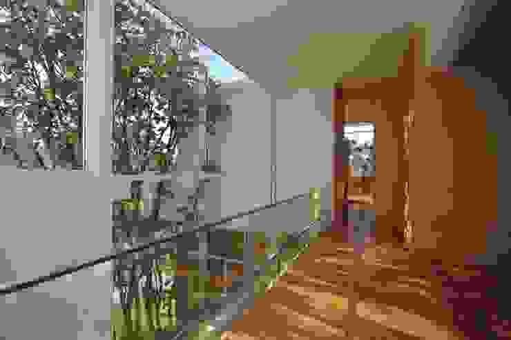 Corredores, halls e escadas minimalistas por Echauri Morales Arquitectos Minimalista Madeira Efeito de madeira