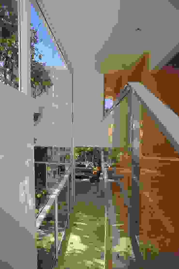 Echauri Morales Arquitectos Minimalist corridor, hallway & stairs Wood Wood effect