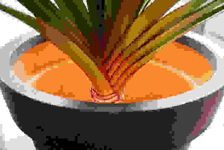 Capi Tutch Orange Interior: modern  door Capi Europe, Modern Kunststof