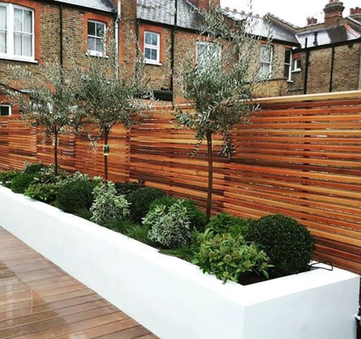 Raised Flower Beds and Ever Greens por IS AND REN STUDIOS LTD