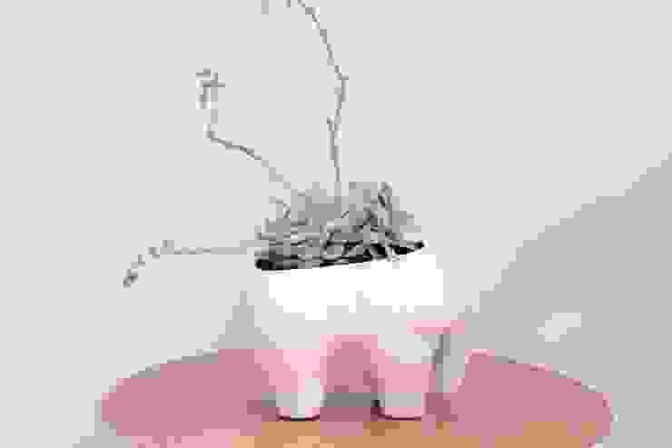 Elefante de El Nicho Verde Minimalista Cerámica