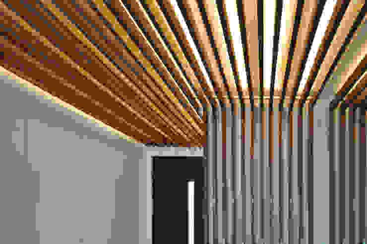 Lamellen: modern  von Pakula & Fischer Architekten GmnH,Modern