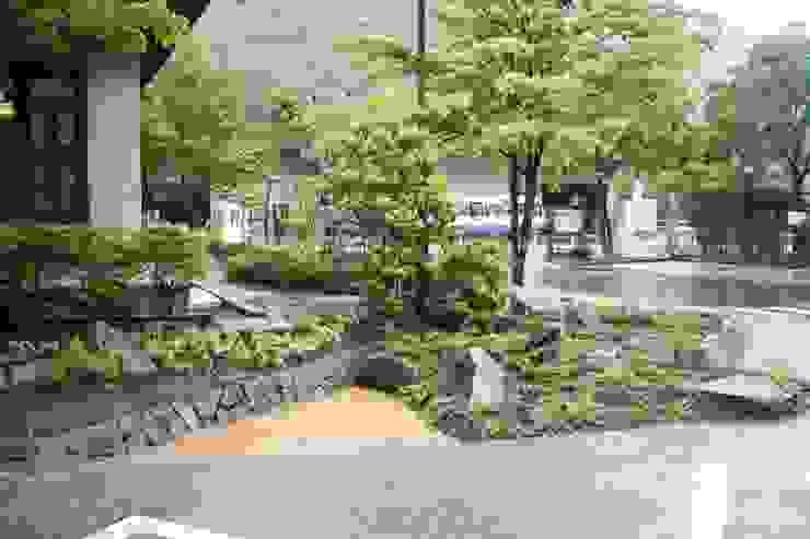 木曽K館 庭のクニフジ Modern style gardens