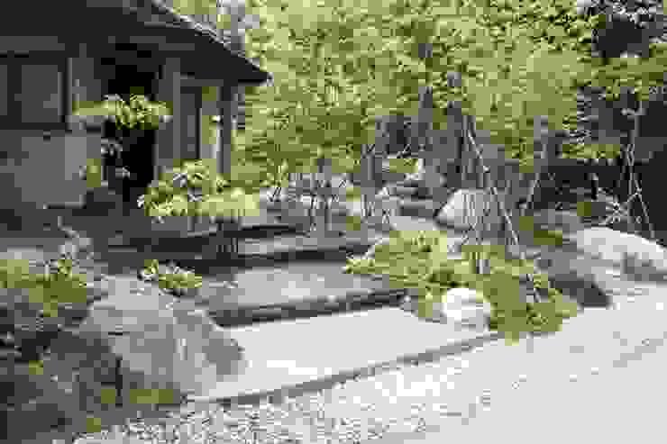 庭のクニフジ의  정원, 모던
