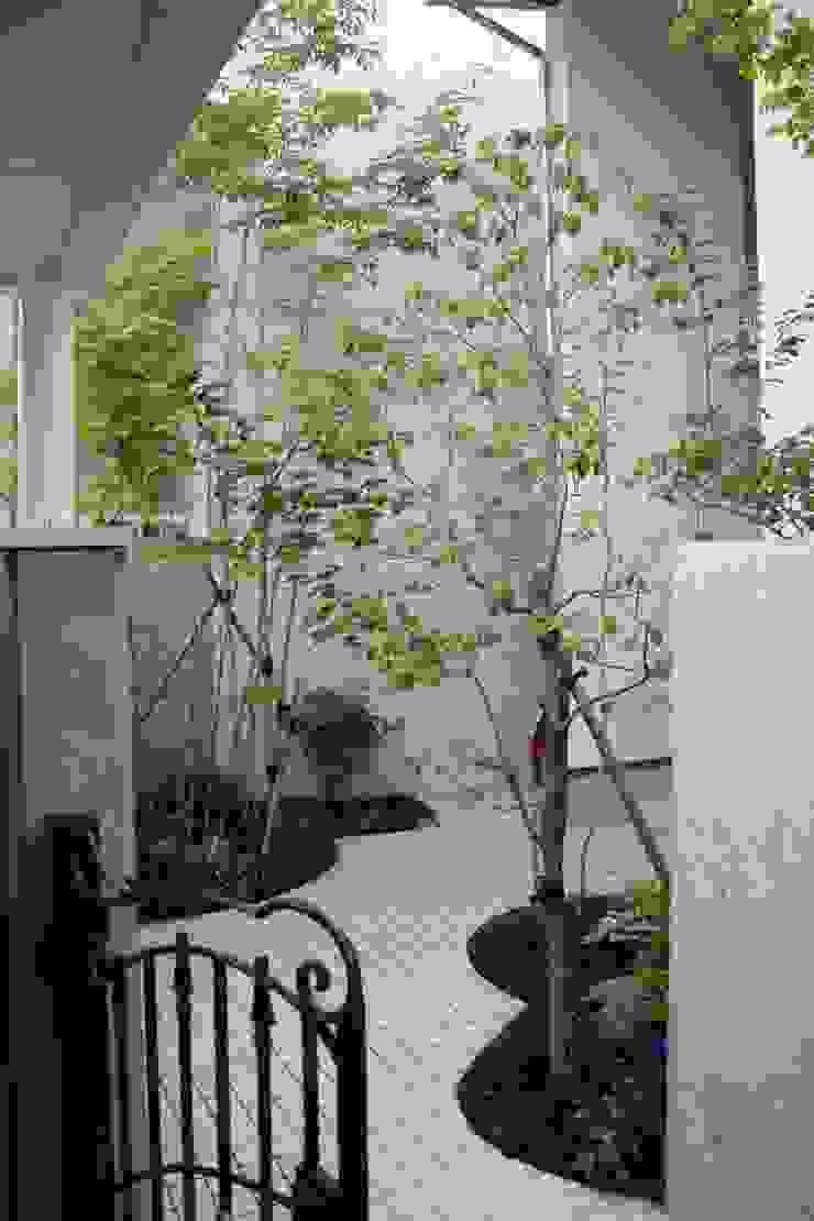 松本Km邸 庭のクニフジ สวน