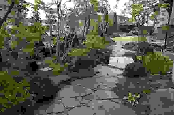 松本T邸 庭のクニフジ Jardin moderne