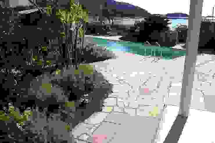 葉山M邸 庭のクニフジ Modern Garden
