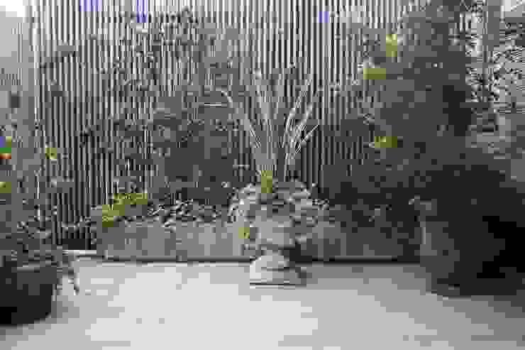 葉山M邸 Jardin moderne par 庭のクニフジ Moderne