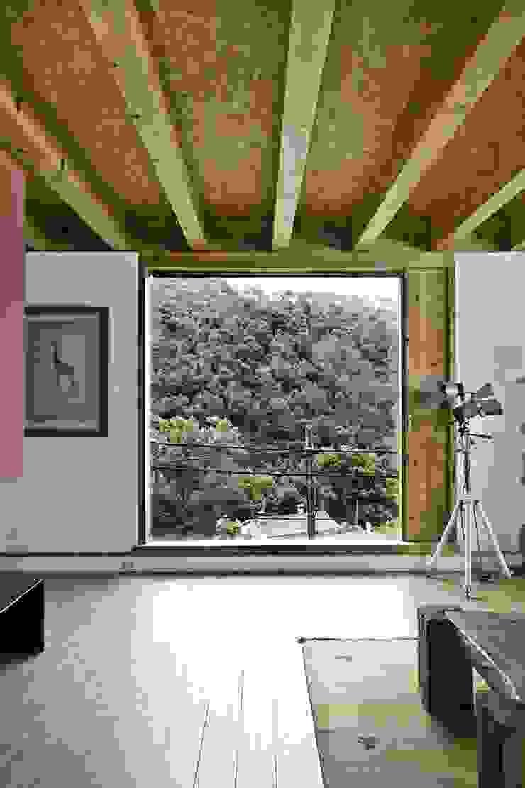 Moderne Fenster & Türen von NOEM Modern