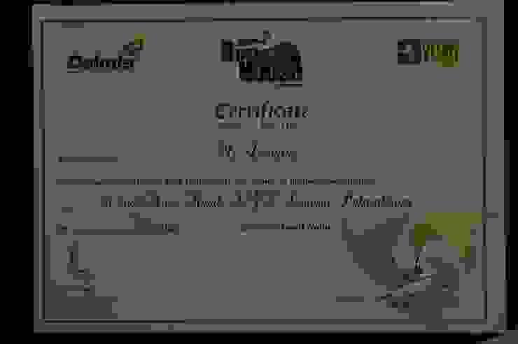 Dalmia VijaTV Award winner Year 2011 Ansari Architects Modern living room