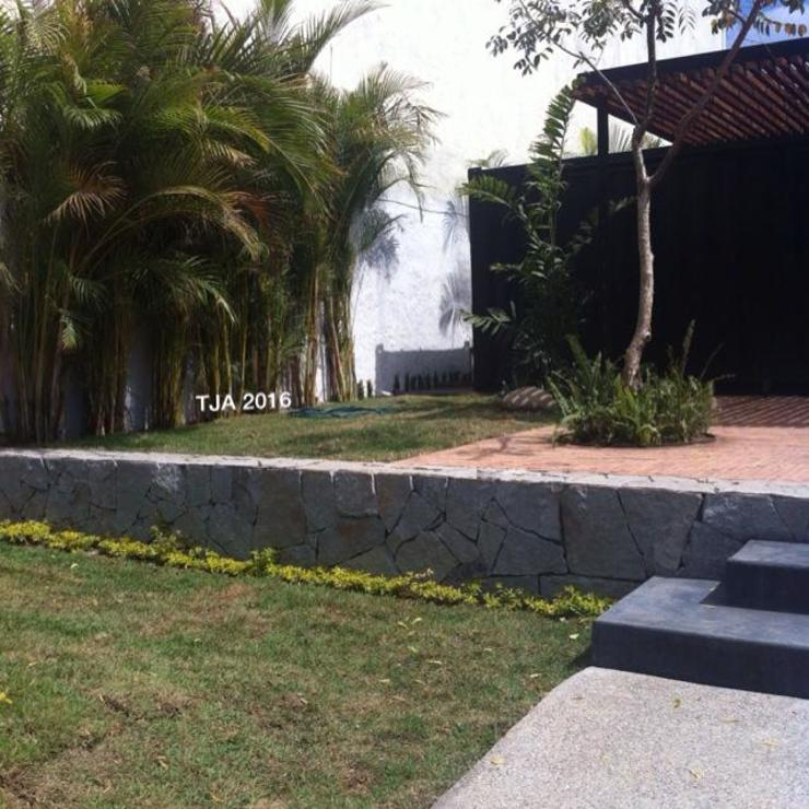 JARDINES COMERCIALES Espacios comerciales de estilo tropical de Tropico Jardineria Tropical
