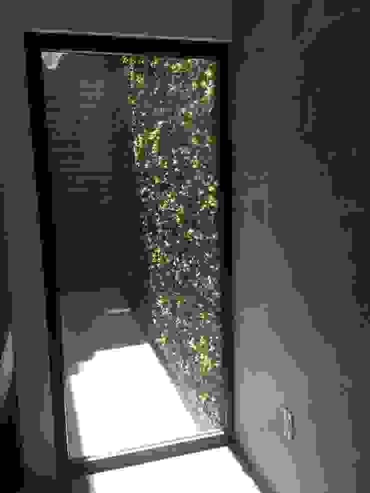 patio Jardines minimalistas de iarkitektura Minimalista
