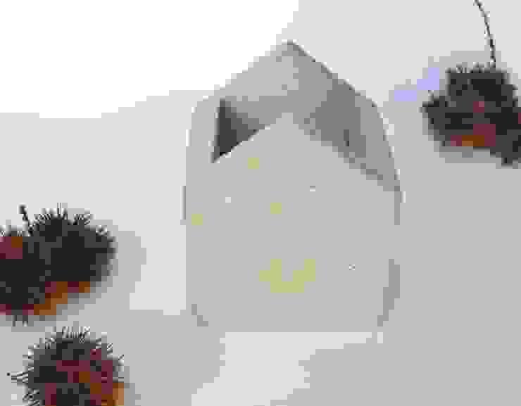 BODOQUE - Diseño en Concreto HogarPlantas y accesorios Gris