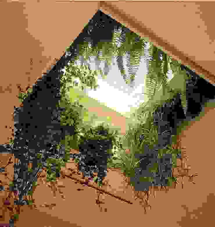 de Dotto Francesco consulting Green Mediterráneo