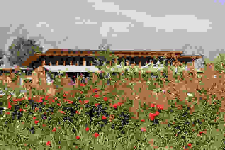Casa unifamiliare in stile  di ALIWEN arquitectura & construcción sustentable - Santiago, Rurale