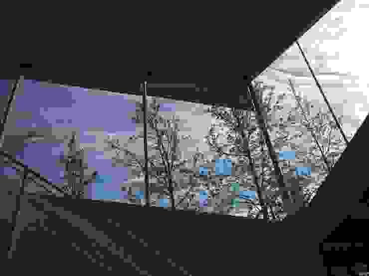 Окна в . Автор – Norte Arquitectura y Construccion, Модерн