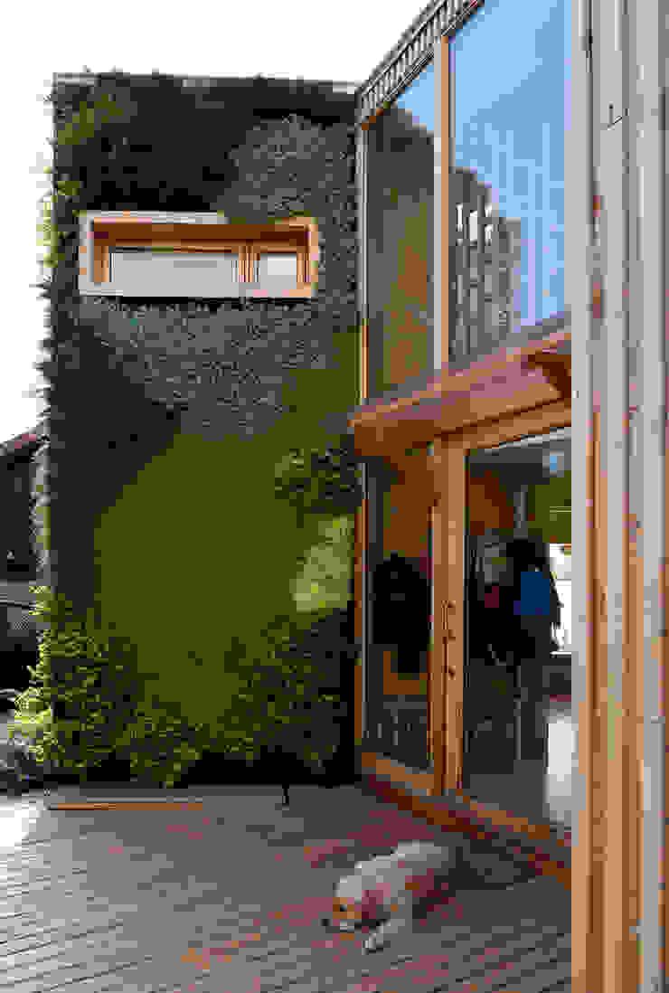 CASA ITAHUE Modern home by VERDE360 Modern