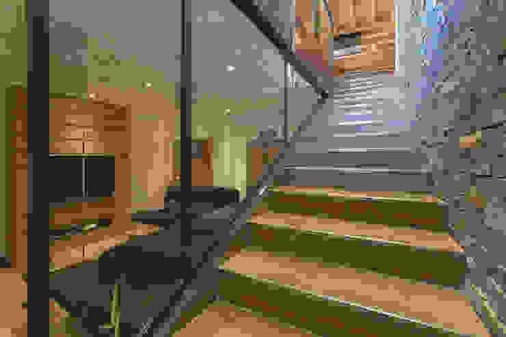 Chevallier Architectes Modern corridor, hallway & stairs Wood