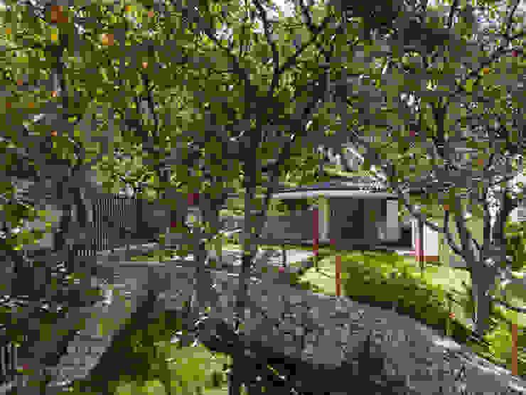 terraza jardin Balcones y terrazas de estilo colonial de Excelencia en Diseño Colonial Piedra