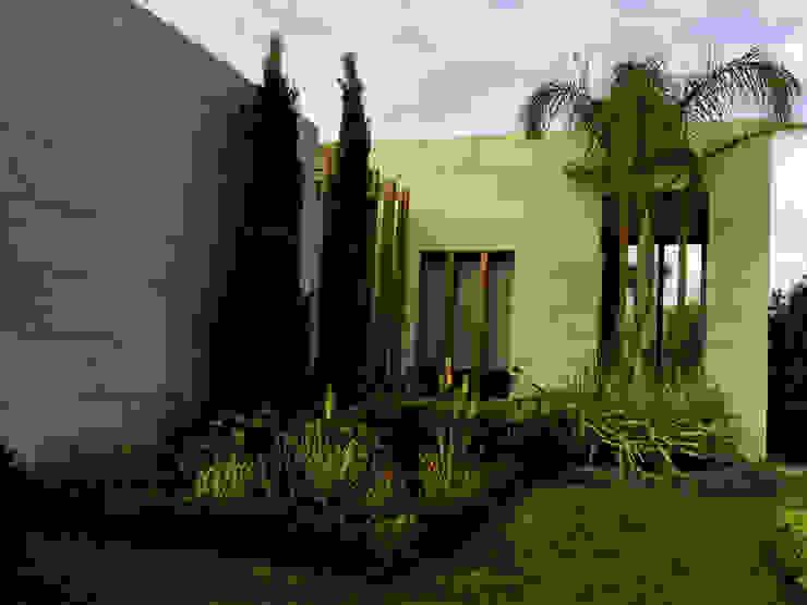 MANDARIN ORIENTAL – PEYZAJ PROJE & UYGULAMA // MANDARIN ORIENTAL – LANDSCAPE PROJECT&APPLICATION Modern Bahçe AYTÜL TEMİZ LANDSCAPE DESIGN Modern