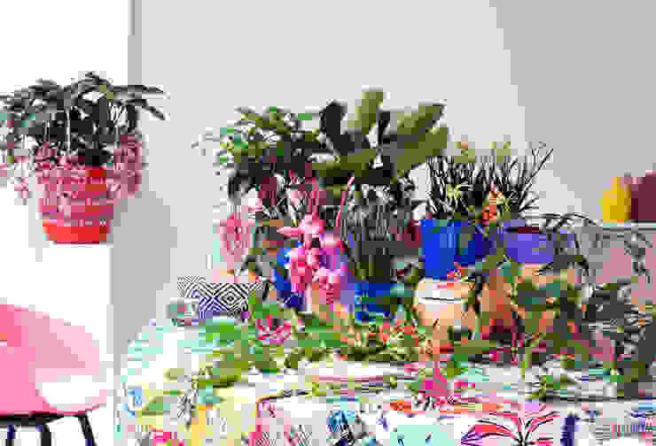 Paisagismo de interior  por Pflanzenfreude.de,