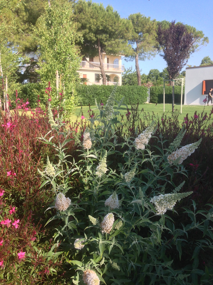 Contemporary garden GAAP Studio Giorgio Asciutti Architetto Paesaggista Giardino moderno