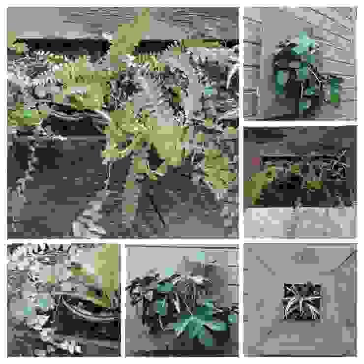 cuadros verdes MANUVERDE HogarAccesorios y decoración