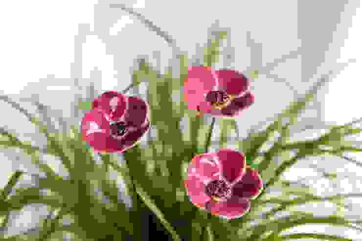 fair-art Steffen Karol Dining roomAccessories & decoration Ceramic Red