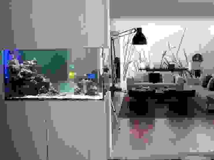 ADn saltwater aquarium por ADn Aquarium Design Moderno