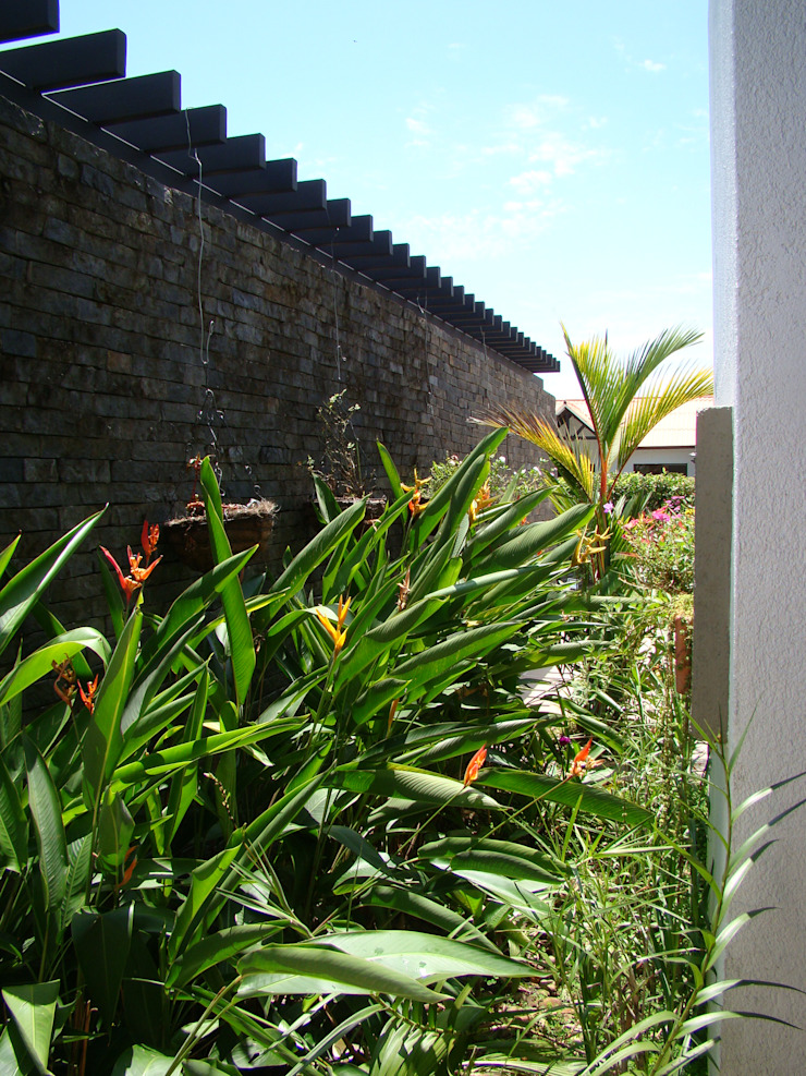 Casa Caracoli Jardines de estilo mediterráneo de David Macias Arquitectura & Urbanismo Mediterráneo