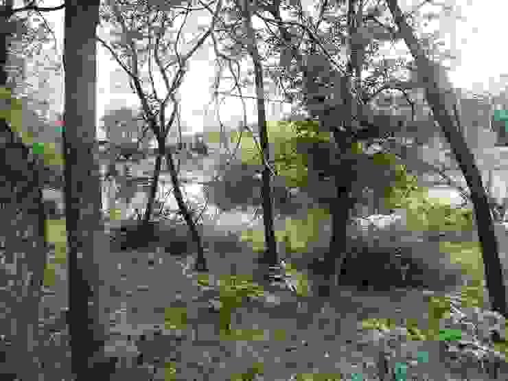 Abundante vegetación Liliana almada Propiedades Jardines de estilo colonial