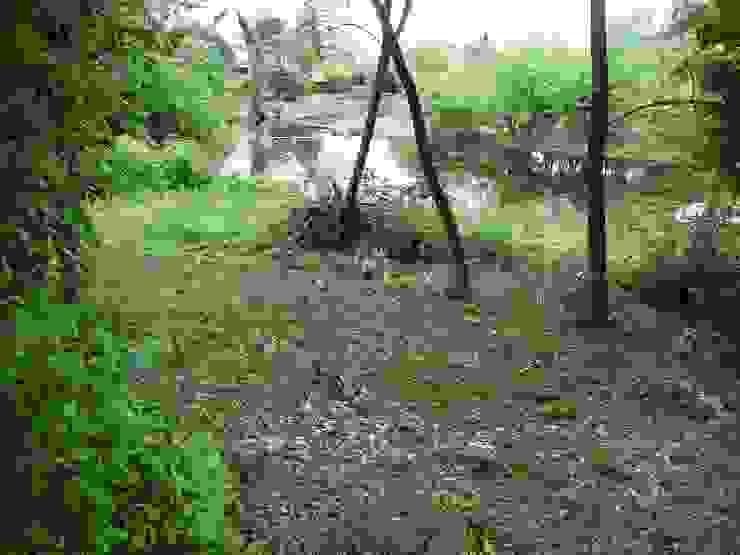 Otra imagen del río y la vegetación Liliana almada Propiedades Jardines de estilo colonial