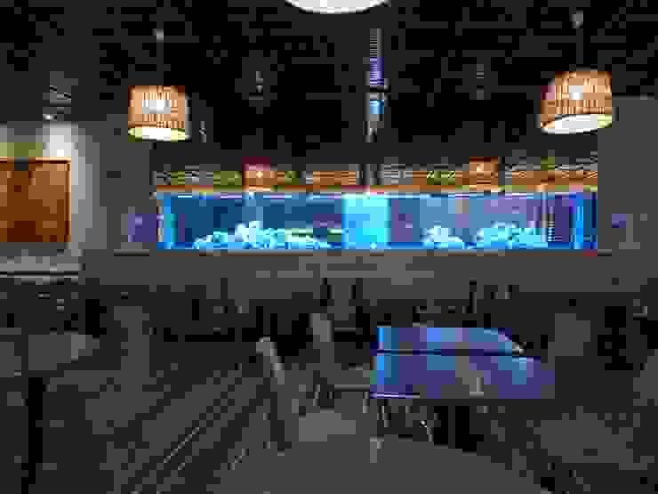 ADn's 6 m cichlids aquarium por ADn Aquarium Design Clássico