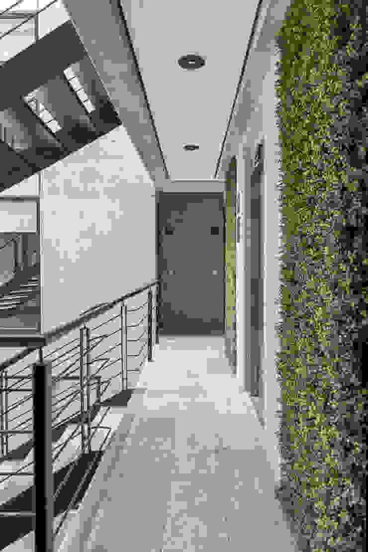 Sinaloa 20 Puertas y ventanas modernas de PHia Moderno