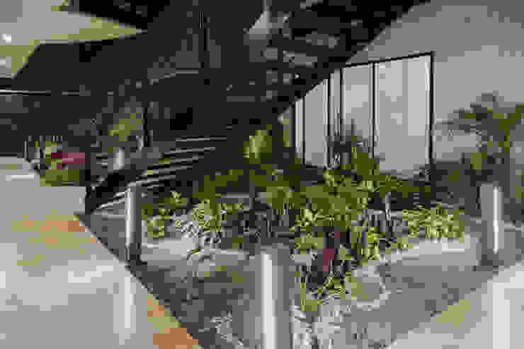 Sinaloa 20 Jardines modernos de PHia Moderno