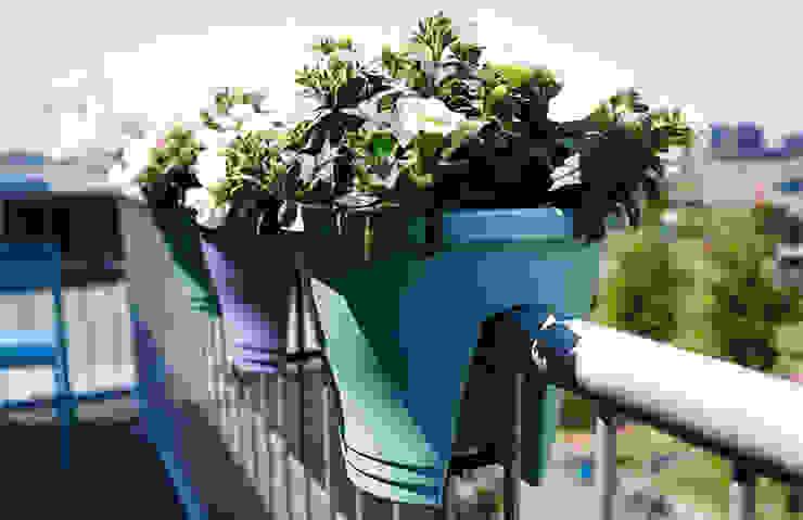 Corsica Flower Bridge 30 cms de Elho México Moderno Plástico