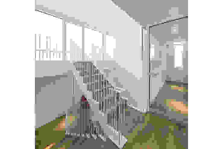 Treppe gerken.architekten+ingenieure Moderner Flur, Diele & Treppenhaus