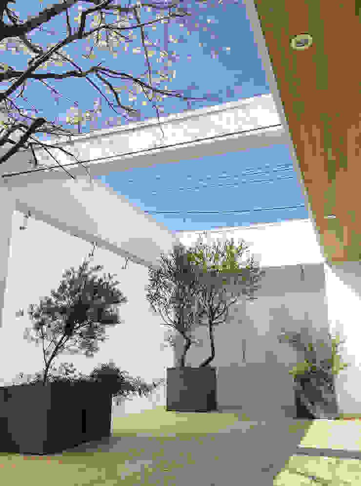 Coutyard (有)ハートランド モダンデザインの テラス 緑