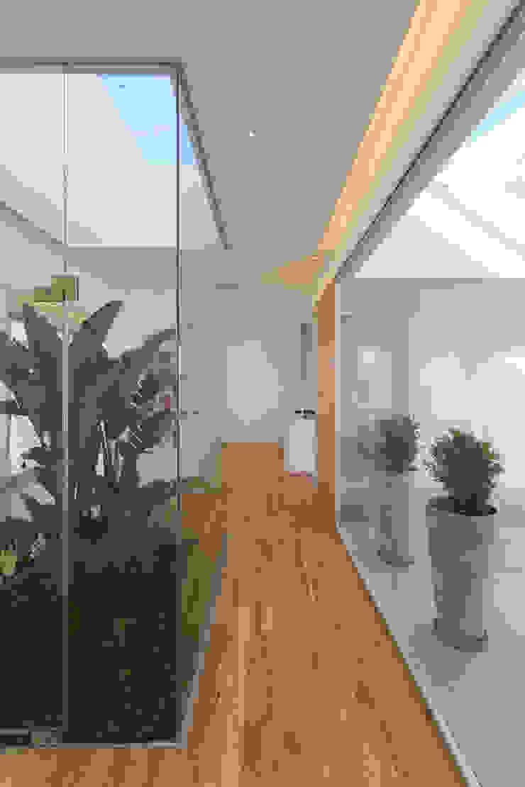 PATIO INTERNO Pasillos, vestíbulos y escaleras de estilo minimalista de VISMARACORSI ARQUITECTOS Minimalista