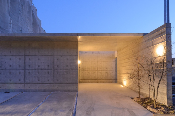 杏子とハナミズキ モダンな庭 の 風景のある家.LLC モダン コンクリート