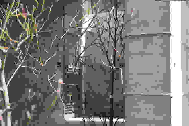 杏子とハナミズキ: 風景のある家.LLCが手掛けた廊下 & 玄関です。