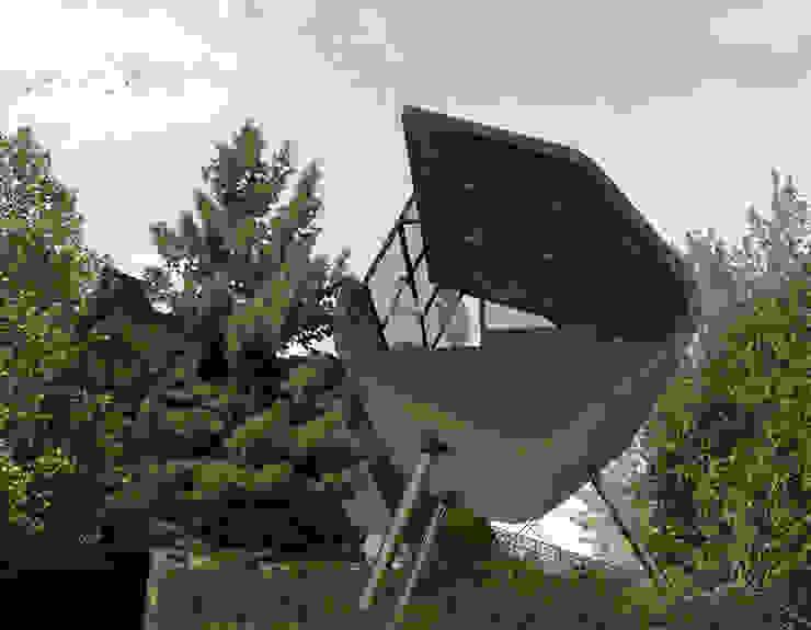 Casa del Árbol - RIMA Arquitectura Casas modernas de RIMA Arquitectura Moderno