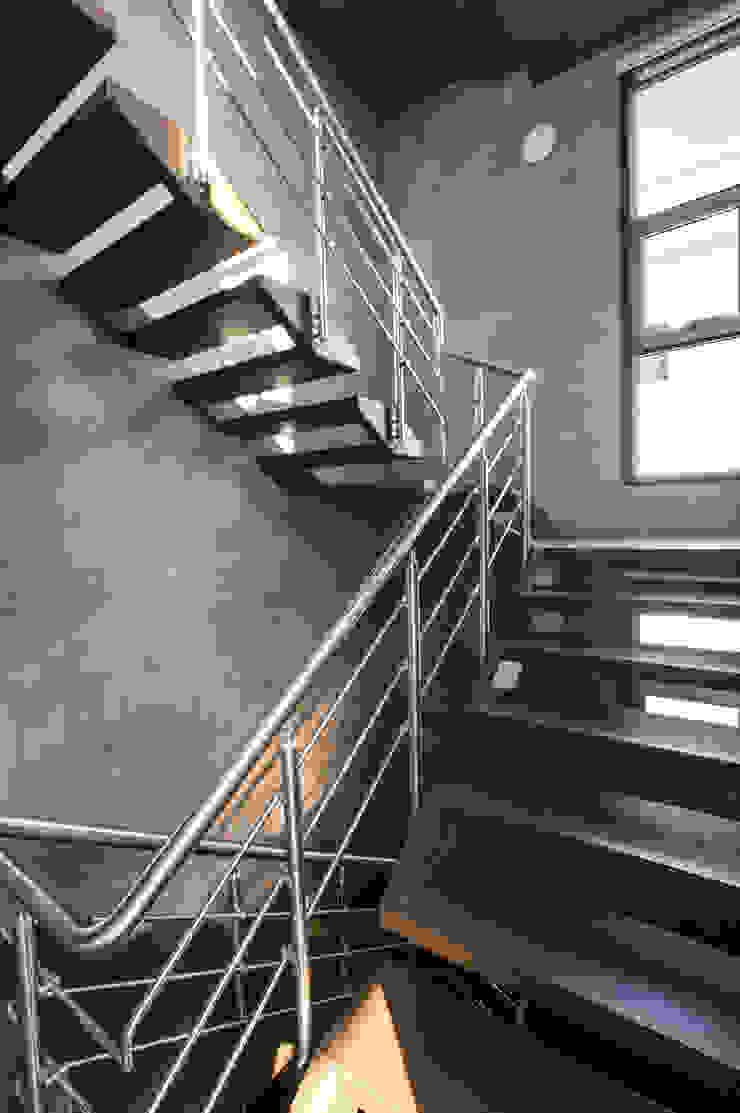 Butterfly House Modern corridor, hallway & stairs by ESSTEAM Modern Iron/Steel