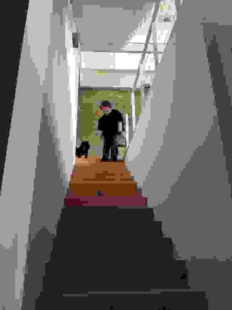 Rehabilitación de vivienda Unifamiliar. Pasillos, vestíbulos y escaleras de estilo moderno de HUGA ARQUITECTOS Moderno Madera Acabado en madera