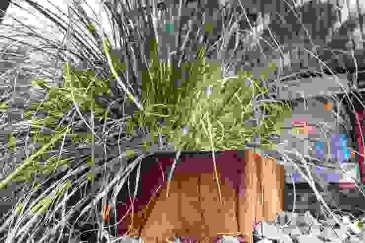 Will GmbH Jardin moderne Métal