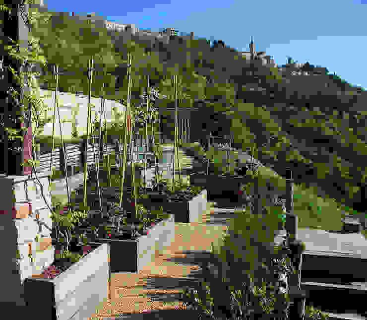 Giardini Giordani Mediterranean style garden Wood